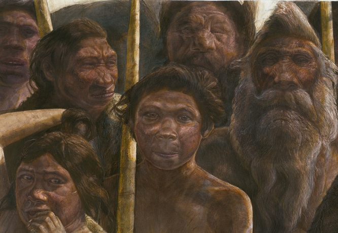 Image result for Before Neanderthal There Was Denisovan?